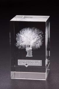 Grabación vidrio en 3D